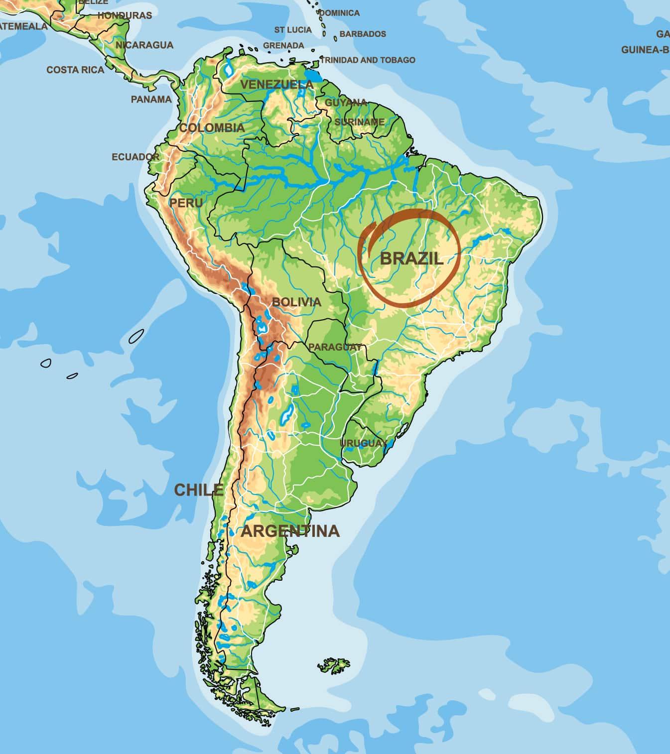 Kaffeeanbaugebiet Brasilien