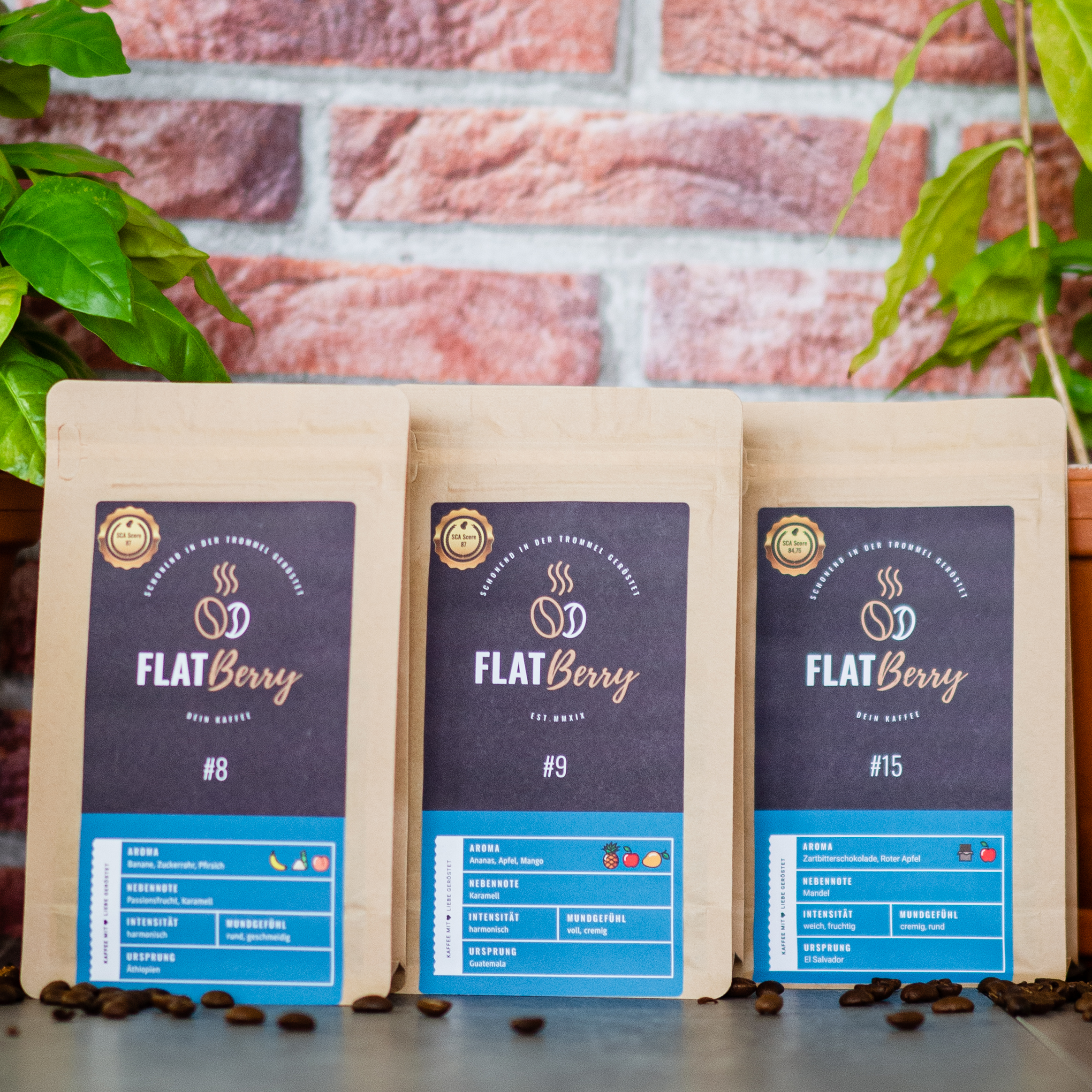 Flatberry Kaffee Adventskalender Filterkaffee