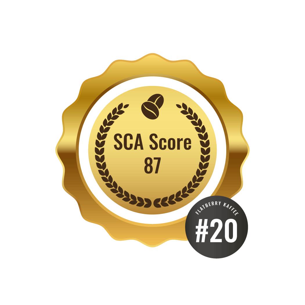SCA Score 87