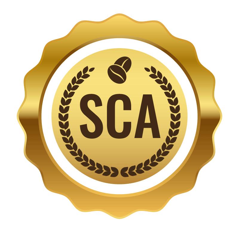 Siegel SCA-Score